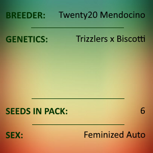 Twenty20 Mendocino - Trizkit
