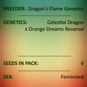 Dragons Flame Genetics - Dude You're Droolin
