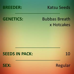 Katsu Seeds - Cheat Code