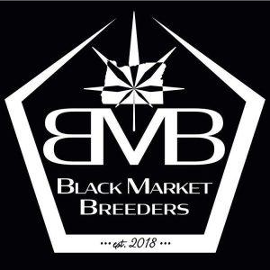 Black Market Breeders - Cannabis seed breeder