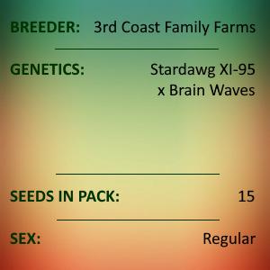 3rd Coast Family Farms - Space Waves