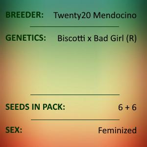 Twenty20 Mendocino - Girl Crush