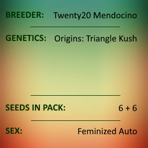 Twenty20 Mendocino - Triks