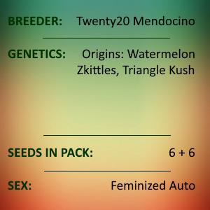 Twenty20 Mendocino - Trizzlers
